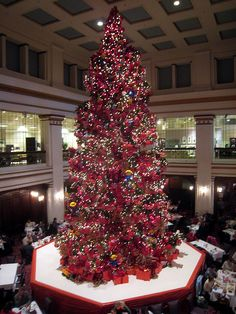 Its not Christmas without a trip to the Walnut Room in Chicago to ...