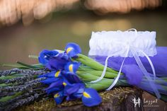 Lazzat Photography | Darrington, WA Wedding | LGBT | Blue Irises |Garter