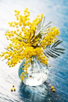 Joys of spring by Natalia Van Doninck on 500px