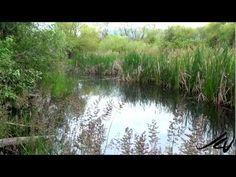 Meio Ambiente e Cidadania: Kelowna BC Bicycle Tour 2012 (video 2) Travel - Yo...