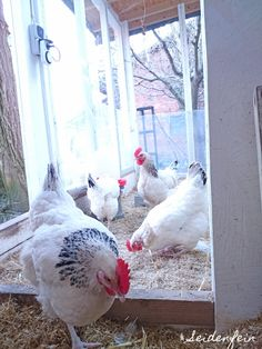 seidenfeins Blog vom schönen Landleben: Papier - Eier * DIY * paper decorated eggs Egg Decorating, Diy Paper, Eggs, Blog, Country Living, Craft Tutorials, Bees, Handarbeit, Egg