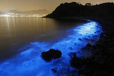 Costa de Hong Kong brilha em um azul misterioso e brilhante 1