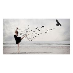 Ballet Bird Creative Photo The Design Inspiration ❤ liked on Polyvore featuring backgrounds, dance, ballet, pictures and photos