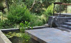 bassin de jardin avec cascade sympa et une végétation abondante