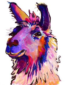 """Trademark Fine Art Pat Saunders-White """"Fabio"""" Canvas Art at Lowe's. This ready to hang, gallery-wrapped art piece features Fabio the Llama. Giclee (jee-clay) is an advanced printmaking process for creating high quality Alpacas, Llamas Animal, Llama Arts, Llama Llama, Canvas Wall Art, Canvas Prints, Animal Paintings, Art Reproductions, Pet Portraits"""