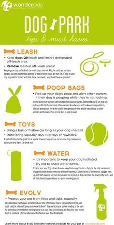 Dog Park Tips and Must Haves with more tips at http://dogtraining-4gswcqzf.thetruthfulreviews.com - Infographic