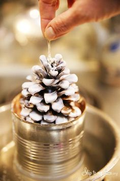 Easy pinecone fire start tutorial. How to make these pretty DIY fire starters for a gift, home or camping.