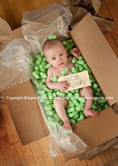 So many Special Deliveries| Great Falls Baby Photography - Inspire Portrait & Design