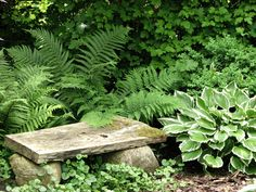 A green seat | by Poppins' Garden