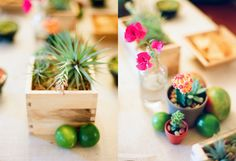 Love these centerpieces and they could be cute favors! Cacti with some sort of Lisa-Josh heart stuck in?