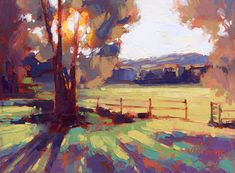 sunset colorful lighting silhouette tree field David Mensing Fine Art