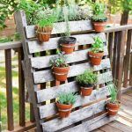 Potted plants and the necessary spring care - potted plants garden plants palet. - Potted plants and the necessary spring care – potted plants garden plants palette diy ideas – - Garden Types, Garden Care, Diy Garden Projects, Diy Garden Decor, Wood Projects, Potager Palettes, Pot Jardin, Small Space Gardening, Garden Planters