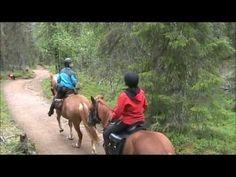 Horseback riding in Korouoma, Lapland