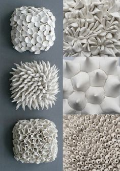Ceramic natural forms from Element Clay Studio. # decor… Ceramic natural forms from Element Clay Studio. Natural Forms Gcse, Natural Form Art, Natural Structures, Clay Tiles, Ceramic Clay, Porcelain Ceramics, Porcelain Tiles, White Ceramics, Motifs Organiques