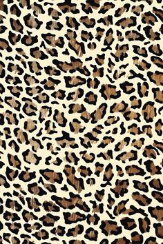 Cheetah print wallpaper on iPhone
