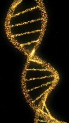 DNA is awesome for our project. Firstly its scientific. It looks abstract and… Science Art, Science And Nature, Forensic Science, Science Books, Life Science, Computer Science, Dna Art, Biology Art, Teaching Biology