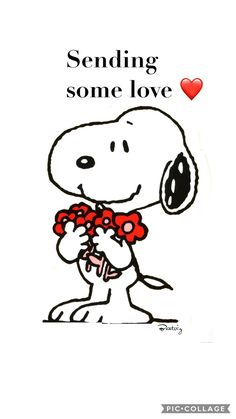 You are amazing just the way you are!- Nellita Sending some Love. Snoopy sayings valentines Snoopy Love, Charlie Brown Et Snoopy, Charlie Brown Quotes, Snoopy And Woodstock, Snoopy Quotes Love, Snoopy Valentine, Snoopy Christmas, Christmas Carol, Valentines