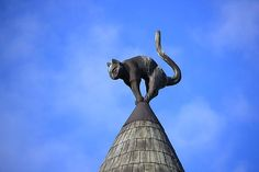 Maison des Chats, Riga