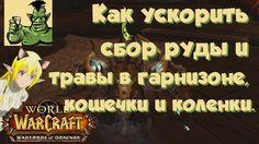 nice World of Warcraft: Warlords of Draenor - Как ускорить сбор руды и травы в гарнизоне, кошечка