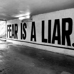 Fear is a Liar. words of inspiration. quotes of wisdom. enjoy life every moment. go for it...you are magic!