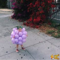 If you're looking for creative DIY Halloween Costumes For Kids, this list is perfect. Get easy and quick ideas for DIY Kids Halloween costumes. So Cute Baby, Baby Love, Cute Kids, Cute Babies, Cutest Babies Ever, Fall Halloween, Happy Halloween, Halloween Party, Homemade Halloween