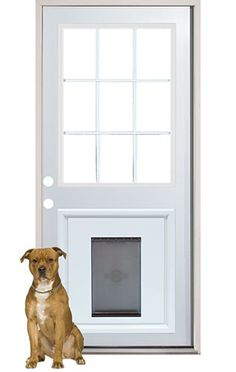 9-lite steel door with external grilles. 3/0 x 6/8. Pre-installed with pet door insert to create a clean and professional look.