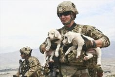 Soldier & Puppies  REAL men are kind to animals!!!  Please spay and neuter to end pet overpopulation.