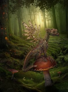 Haha! Oh Dragon! Do you live in fear of the times I hide from you under my mushroom and thus you think that if you just sit on top of the mushroom maybe you can prevent that?! Lol! Precious!!!!