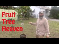 As a raw foodiest I knew South Florida would be a great place to call home.  My dream continues. In this video I make my plans for my fruit orchard.