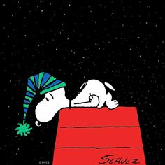 New hat ♥️♥️ Snoopy Peanuts Characters, Cartoon Characters, Goodnight Snoopy, Snoopy Und Woodstock, Snoopy Quotes, Peanuts Quotes, Joe Cool, Snoopy Christmas, Christmas Time