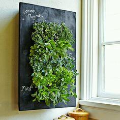 Vertical herb garden - ❤ the chalkboard paint