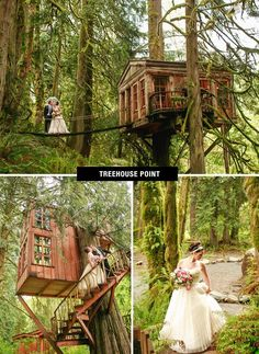 treehouse point wedding venue in Issaquah, Washington mins away from Seattle! Cheap Wedding Venues, Wedding Reception Locations, Reception Ideas, Wedding Receptions, Tenerife, Treehouse Wedding, Wedding Venue Inspiration, Wedding Ideas, Wedding Planning