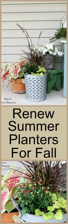 Fall To A Summer Planter Shows you how to extend your summer container gardens into the fall season in style!Shows you how to extend your summer container gardens into the fall season in style! Fall Planters, Garden Planters, Outdoor Planters, Container Flowers, Container Plants, Flowering Kale, Flower Tower, Fall Containers, Container Gardening Vegetables