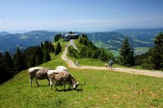 Bezau, Bregenzerwald, Austria