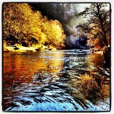 Alsea river winter steelhead fishing.
