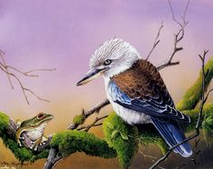 eric shepherd птицы: 2 тыс изображений найдено в Яндекс.Картинках