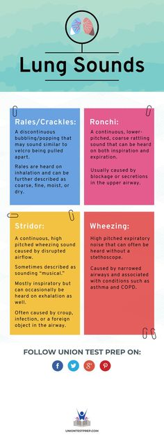 Find out the subtle differences between each type of lung sound here!