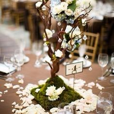 New tree wedding centerpieces manzanita ideas Tree Wedding, Forest Wedding, Wedding Table, Our Wedding, Wedding Flowers, Plum Flowers, Wedding Story, Bouquet Wedding, Purple Wedding