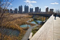 Image 5 of 18 from gallery of Qunli Stormwater Wetland Park / Turenscape. Photograph by Turenscape