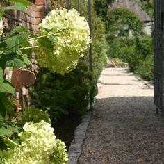 Pflanzpan – Wachsende Freude: Pflanzplan Gartengestaltung  Terrassengestaltung hat sich auf die Planung und Gestaltung von Gärten, Terrassen  Dachterrassen sowie Indoor-Bereichen in Wien und Niederösterreich spezialisiert. Daneben bieten wir auch eine Auswahl an Garten-Deco-Accessoires, Designer Garten-  Outdoormöbel ebenso wie eine fachgerechte Pflege aus Profihand an. #Garten #Gartenplanung  #Gartengestaltung  #Gartenbewässerung #Gartenbeleuchtung #Gartenmöbel #Gartenpflege Fruit, Plants, Designer, Yard Maintenance, Garden Planning, Landscaping, Plant, Planets