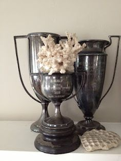 Spring Hill Farm: Love for Vintage Trophies