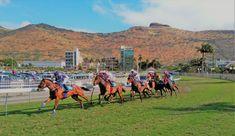 Horse Racing at Champ de Mars Racecourse Mauritius Travel Guides, Travel Tips, Africa Travel, Mauritius, Horse Racing, The Locals, Mars, Rum, Dolores Park
