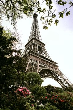 Eiffel Tower Photograph by Joe Bonita