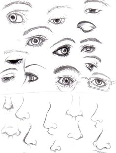 Eyes and Noses by ~Luzille on deviantART