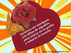 Gifs Hermosos Cosas Bonitas Encontradsd En La Web Bonito Love