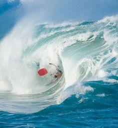 Uhm  ... I can do that Waimea Bay, Big Wave Surfing, Learn To Surf, The Beach Boys, Wipe Out, Beach Bum, Ocean Beach, Making Waves, Summer Dream