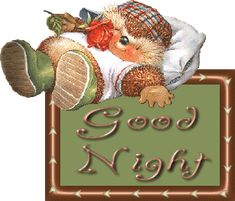 Beary Good Night Glitter