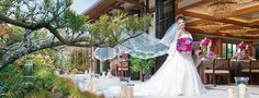 kiyomizu  http://www.kyoyome.com/wedding/details/0030.html