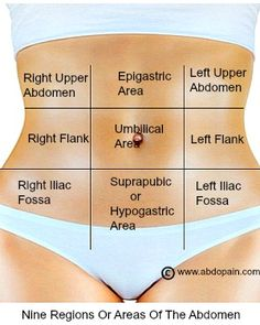 There are the 9 areas or regions of the abdomen in medical terms.