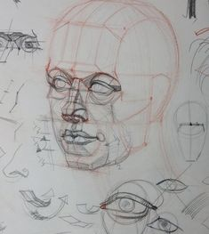 Fabulous Drawing On Creativity Ideas. Captivating Drawing On Creativity Ideas. Human Anatomy Drawing, Anatomy Art, Human Figure Drawing, Figure Drawing Reference, Anatomy Reference, Pose Reference, 3d Drawings, Realistic Drawings, Anatomy Sketches